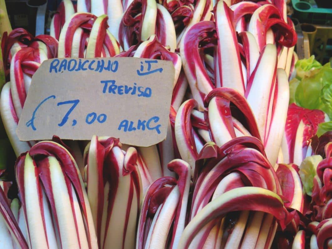 Bologna - Radiccio