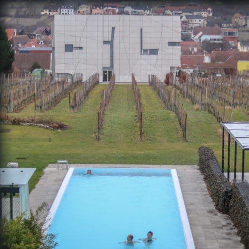 Loisium Langenlois Pool